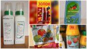 Химические препараты против листовертки