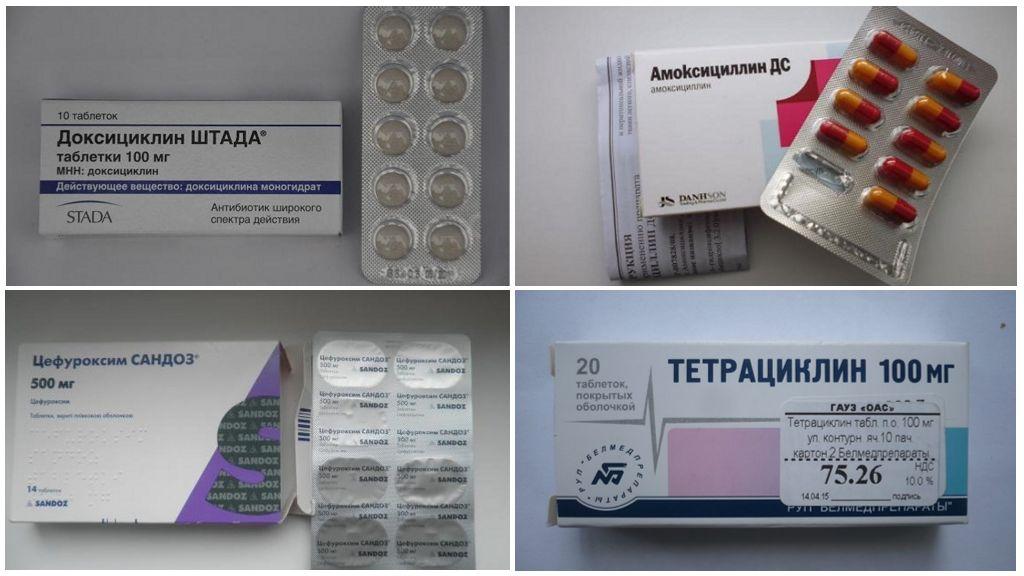 Антибиотики в таблетках от боррелиоза