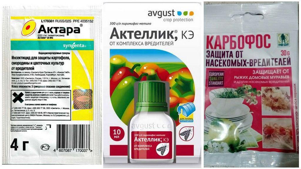 Препараты для борьбы с паутинным клещом