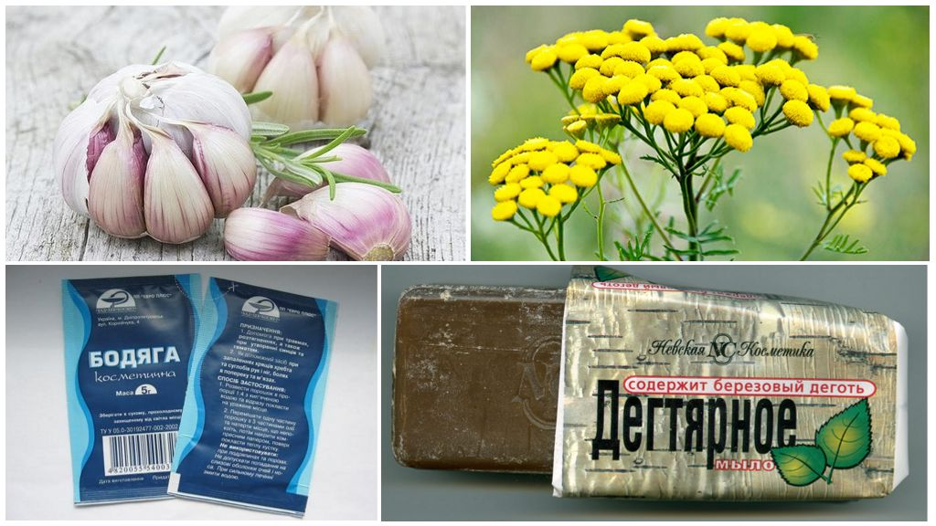 Народная медицина против демодекоза