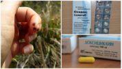 Препарат Доксициклин для профилактики при укусе клеща