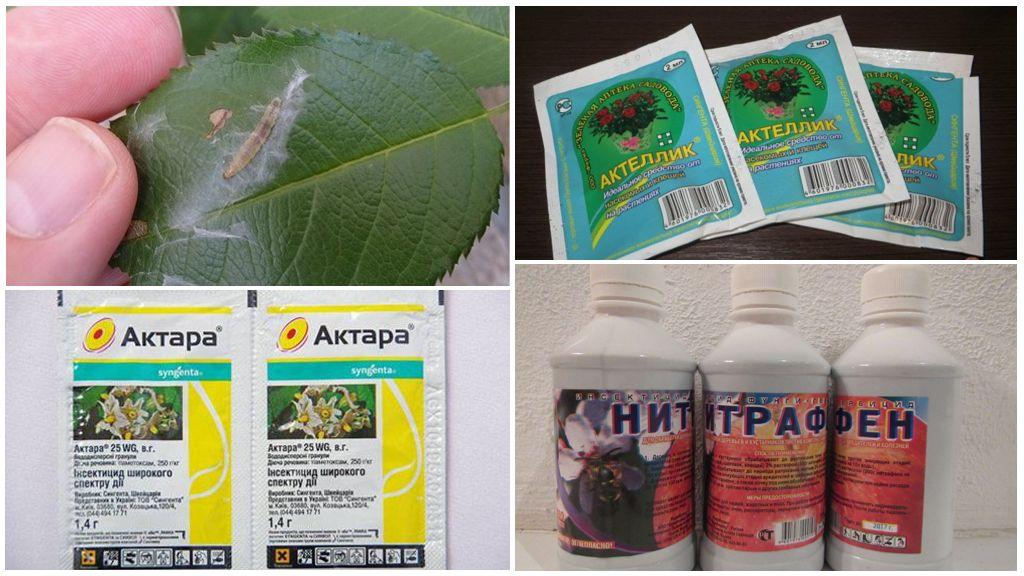 Химические средства от гусениц