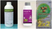 Инсектициды для борьбы с паутинным клещом