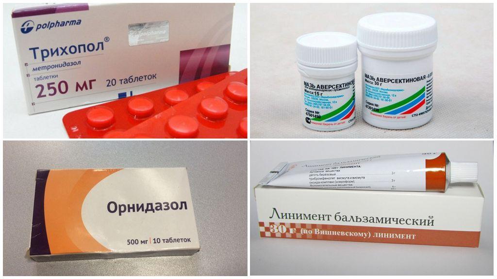 Лекарственные препараты для борьбы с ушным клещом