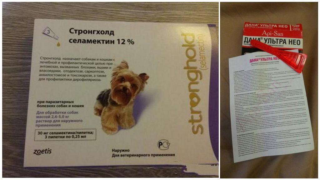 Капли для собак от клещей