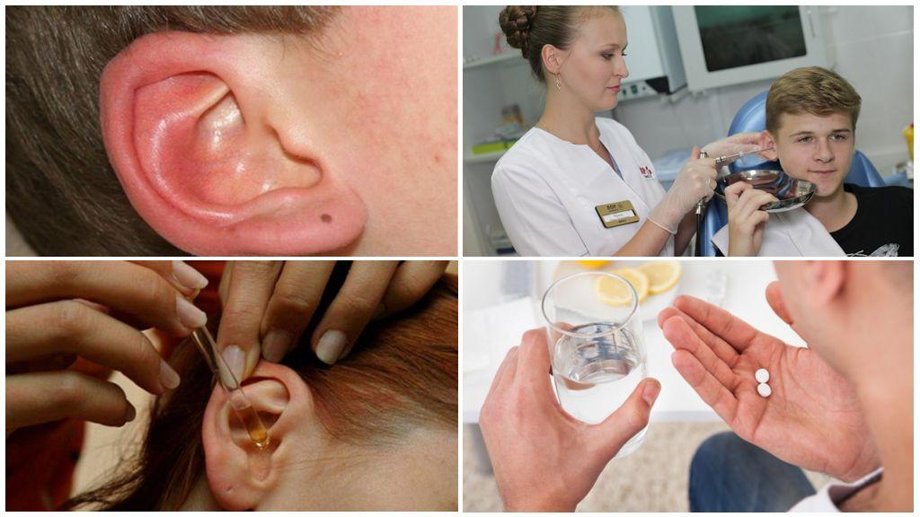 Клещ в ухе у человека: симптомы и лечение