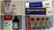Препараты для лечения заболеваний, вызванных клещами