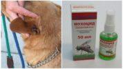 Мухоцид от мух для собак