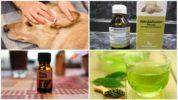 Народные рецепты лечения отодектоза
