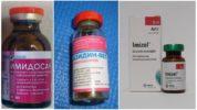 Лекарства от пироплазмоза у собаки