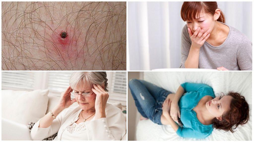 Начальные признаки заболеваний, переносимых клещами