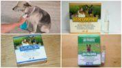 Препараты для обработки собаки от мух