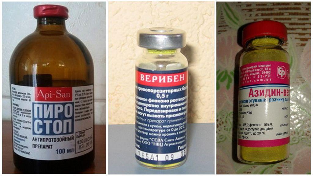 Препараты для собак от паразитов