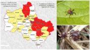 Опасные районы по клещам на карте Московского региона