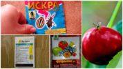 Химические препараты от вишневой мухи