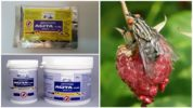 Препарат Агита от мух