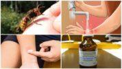 Действия после укуса насекомого