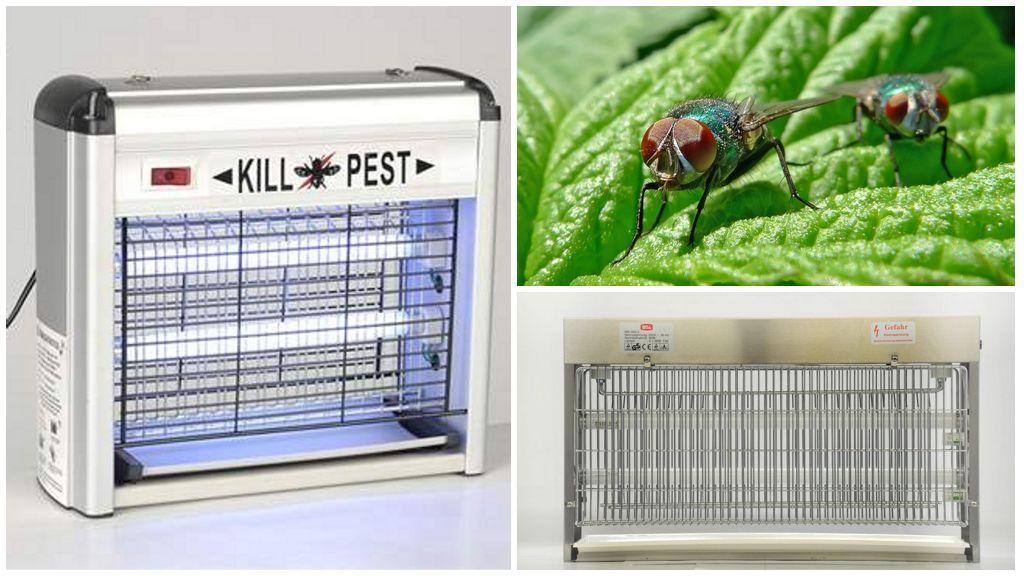 Электрические уничтожители насекомых