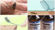 Методы борьбы с осами