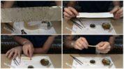 Процесс изготовления липучки для мух