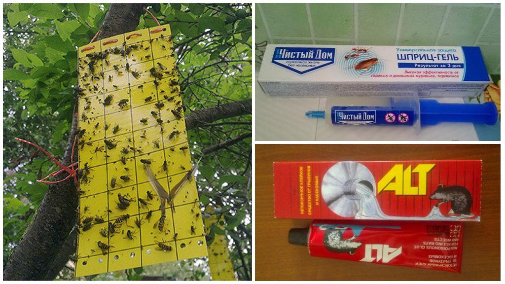Клеевая ловушка для насекомых