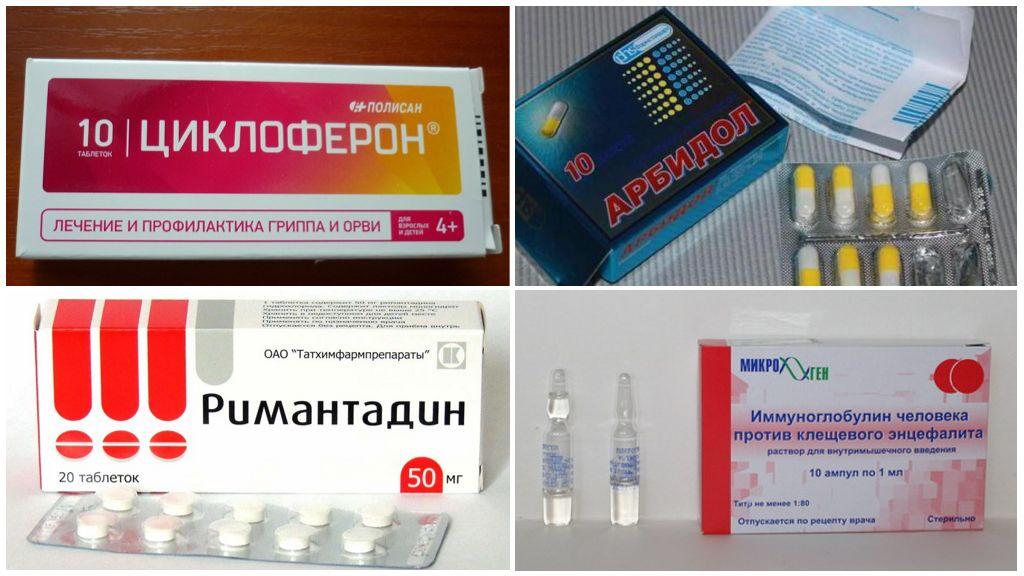 Препараты, назначаемые после укуса клеща