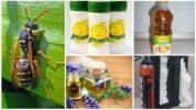 Народные рецепты для борьбы с осами