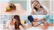 Вред для человека от укуса осы