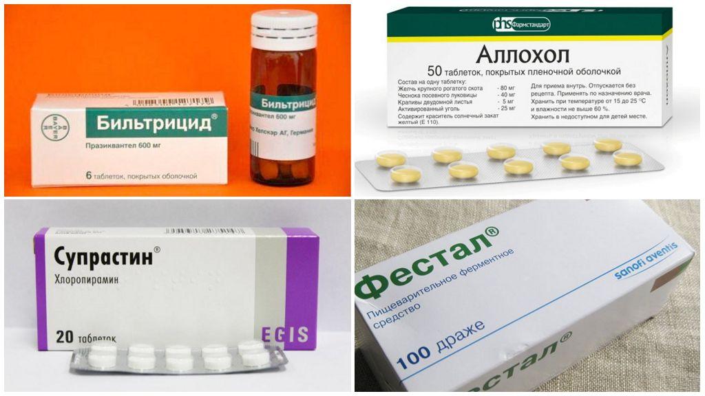 Лечение описторхоза