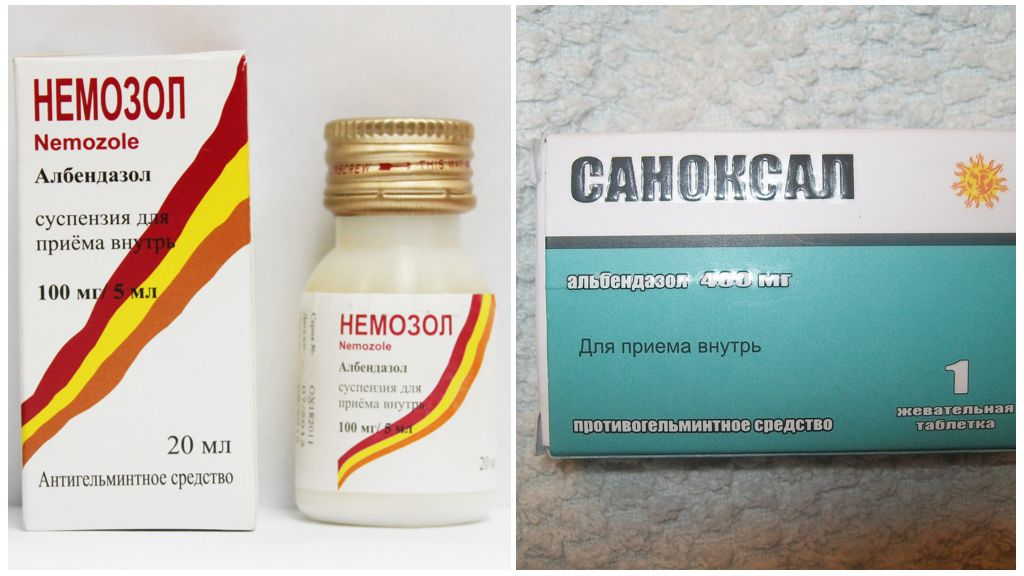 Лечение токсокароза у взрослых