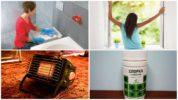 Методы борьбы с насекомыми в квартире