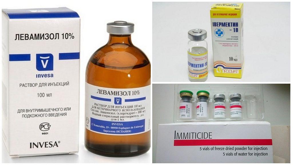 Препараты от дирофиляриоза