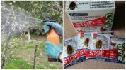 Применение препарата Стоп жук