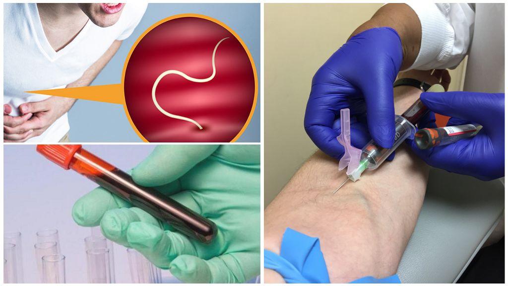 Исследование крови на наличие паразитов