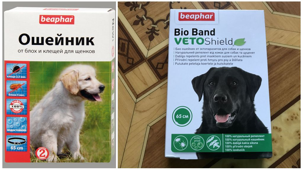 Ошейники для собак от клещей