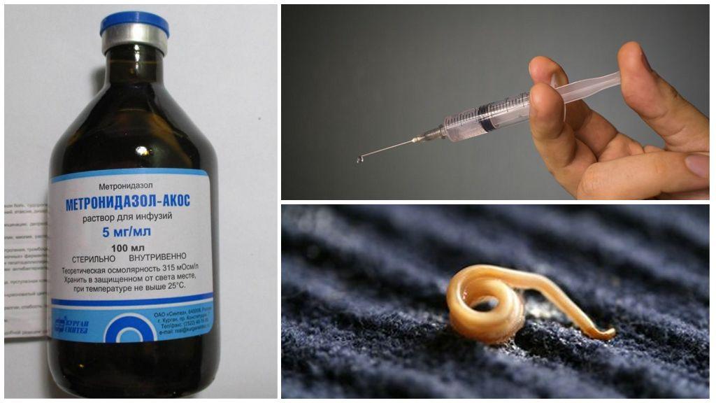 Раствор для инъекций Метронидазол от паразитов