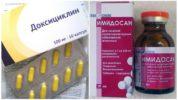 Лечение пироплазмоза