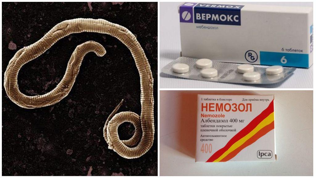 Лекарство от паразитов