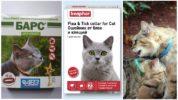 Ошейники для кошек от клещей