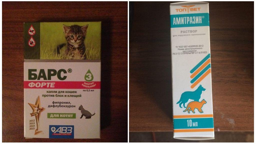 Препараты для лечения котят