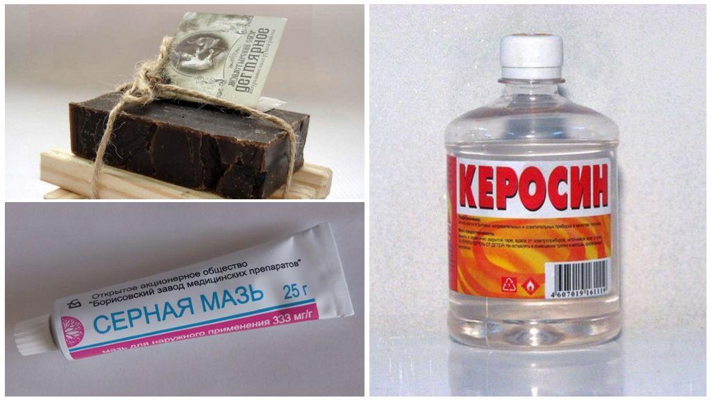 Народные рецепты от демодекоза