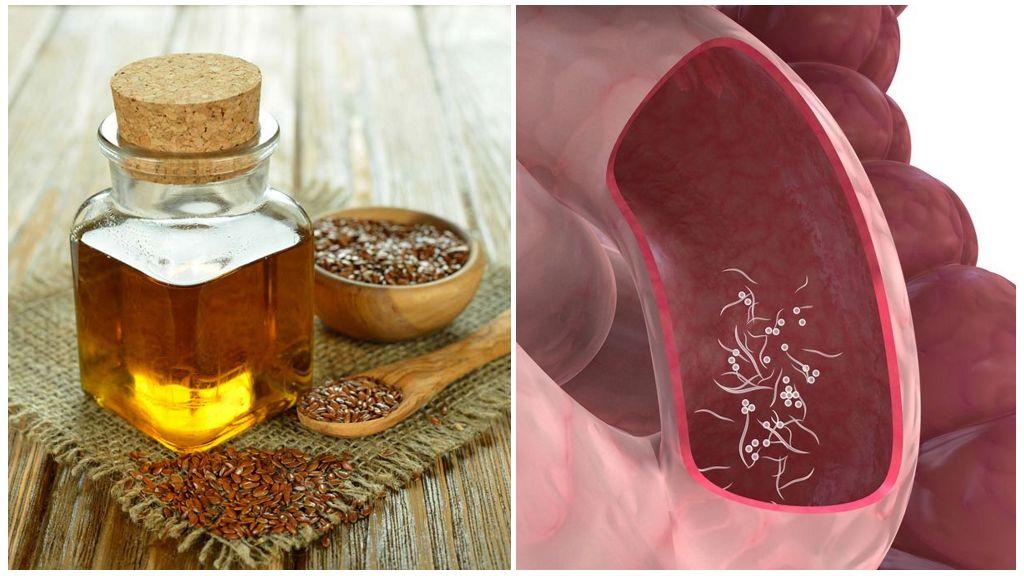 Семена льна и льняное масло от паразитов