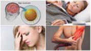 Признаки клещевого энцефалита