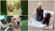 Ванилин от клещей для собак