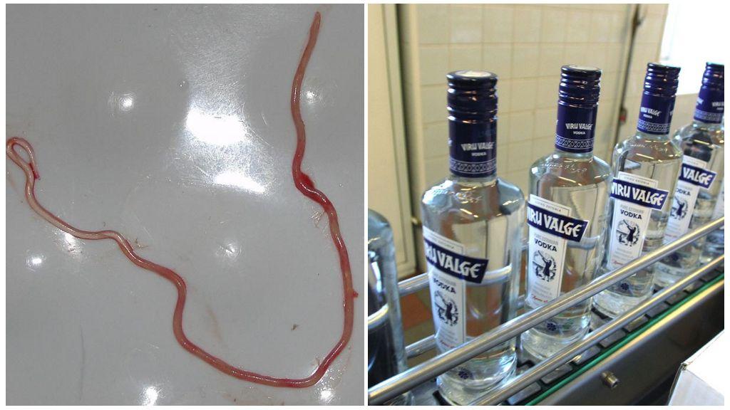 Глисты и алкоголь