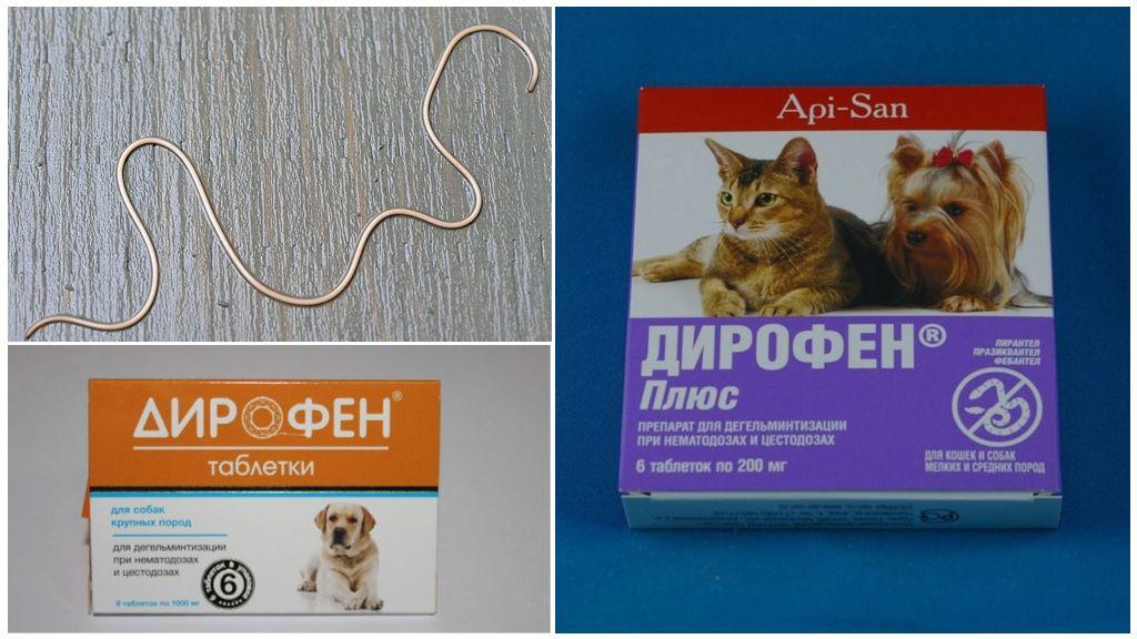 Дирофен для собак