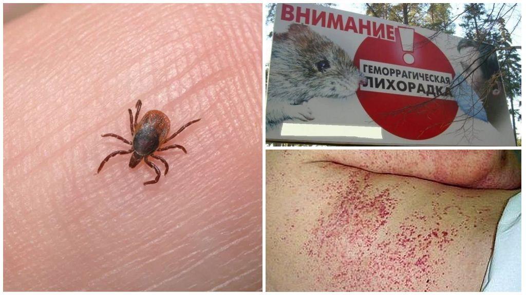 Какие виды клещей есть в Крыму