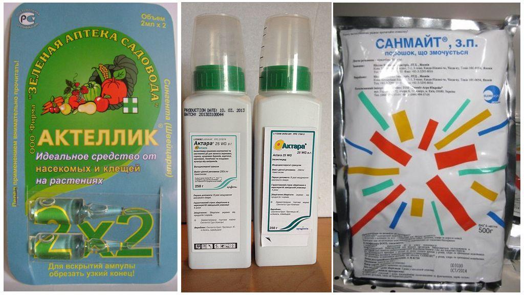 Препараты против паутинного клеща