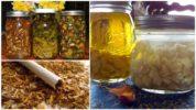Народные рецепты от паутинного клеща
