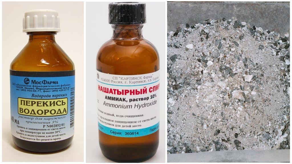 Народные рецепты от паутинного клеща на огурцах